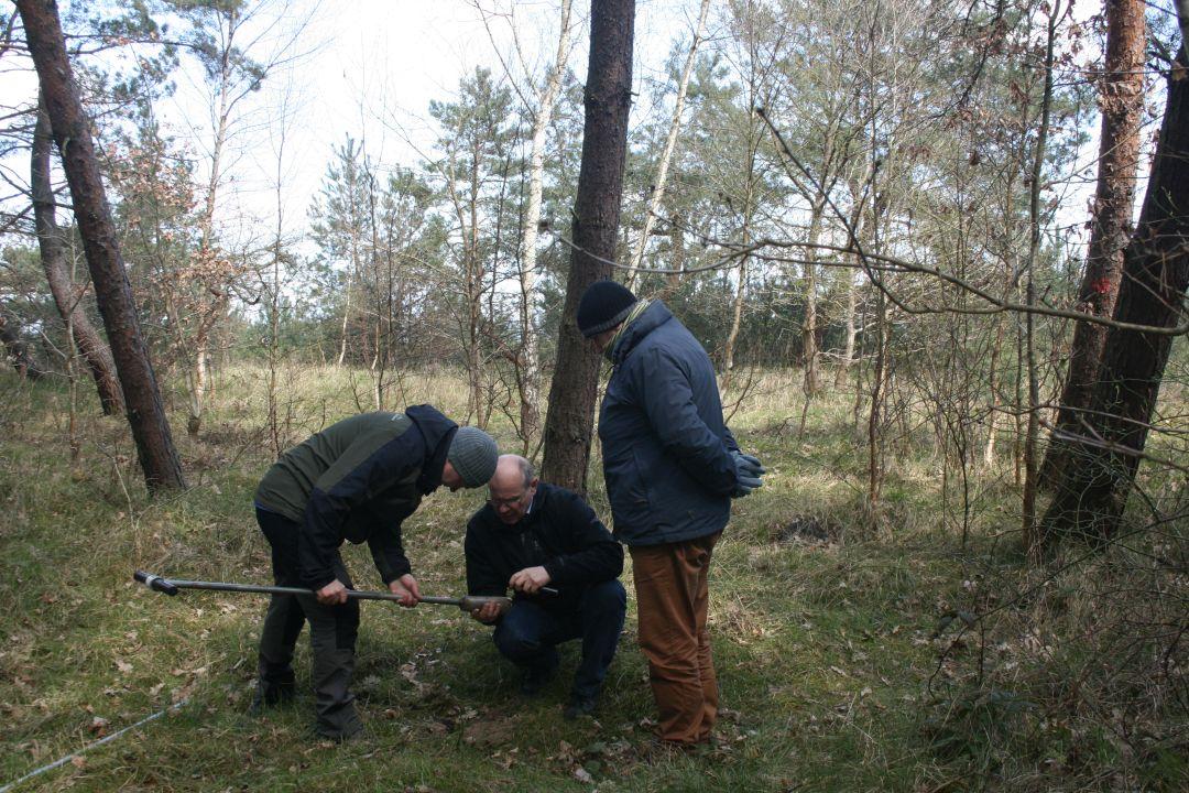 004_o_rzucewskim_lesie